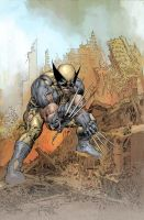 Wolverine variant cover by Summerset