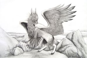 A Hippogriff by Hobbitato