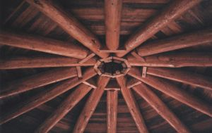 wooden ceiling by dragonfetus