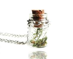 Make a Wish Nature Glass Bottle Vial Necklace by crystaland