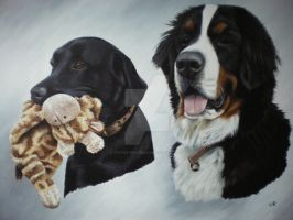 Alfie and Humphrey by petportraitman