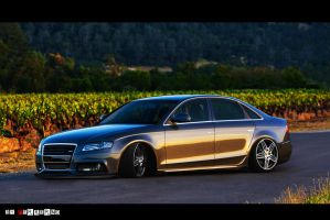Low Audi A4 by Clipse89