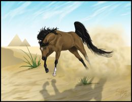 Desert Run by Syeiraxx
