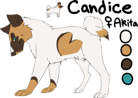 candice ref by tinydoodles