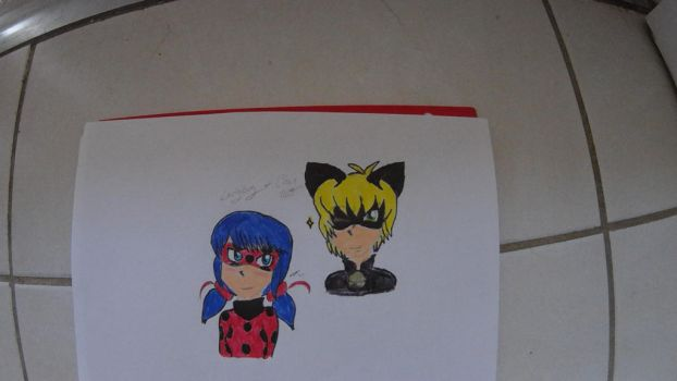 Chat noir and Ladybug request by thepowerofwriting by NightmareNatsu
