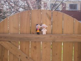 Cherry and Paddy - Fence by Fle-e