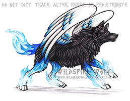 Black And Blue - Sapphire Wolf by WildSpiritWolf
