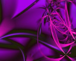 Neon by cania-v2