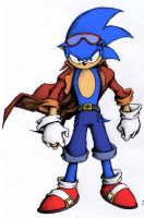 Sonic the Hedgehog by Chaos9889