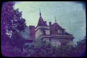 viole'nt di-mansion by VampireHeart518