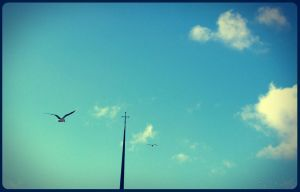Seaguls flying to heaven by Mrben3r