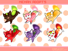 Michan adoptables- fruit batch CLOSED by Capukat