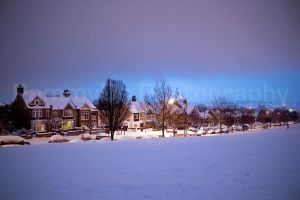 winter wonderland by PammyDsPhotography