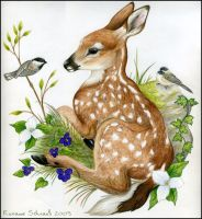 Fawn and Chickadees by winternacht