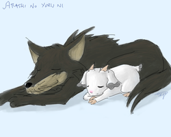 Arashi No Yoru Ni by NebulousSkye