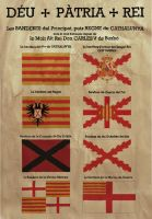 Flag chart of Carlist Catalonia by Ennio444