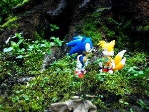 Sonic and tails in the jungle by raverkidd
