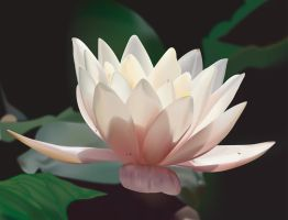 Lotus Blossom by jHalton