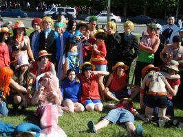 Anime North 2013 - One Piece Cosplay by jmcclare