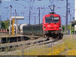 Mixed Freight 050510 by Comboio-Bolt