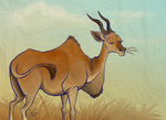 Eland by DawnFrost