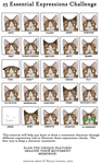 25 Essential Expressions Challenge (With Leafpool) by littleLPSWarriorfan