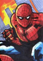 Spiderman Sketchcard by Sigint