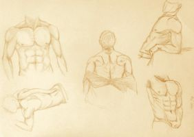 Body sketches. by Kiara2909