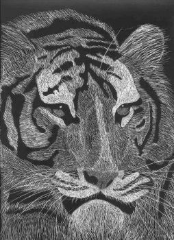 Sumatran Tiger by Leo9