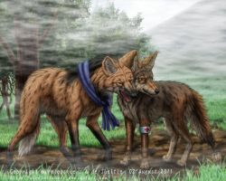 Coyote, Mane Wolf by SheltieWolf