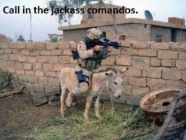 Jackasses by TheFunnyAmerican
