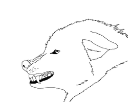 Angry Wolf Lineart by Bambiiie