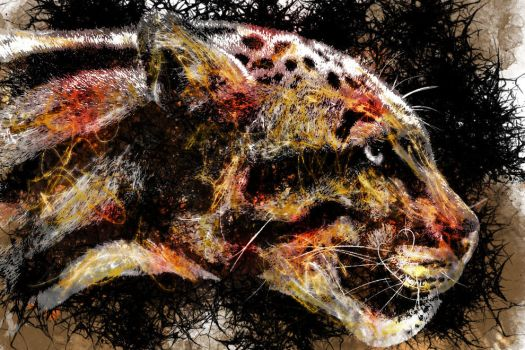 The Leopard by frosty456