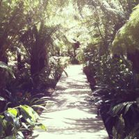 ~Pathway to Paradise~ by Belynx16