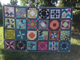 A sampler quilt in solids by xdattax