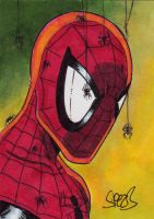 Spider-man by Mark Spears by markman777