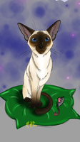 Siamese cat by Natalia1988