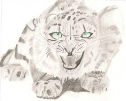 Snow Leopard by Darkness-Fang