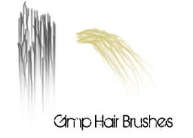 2 Gimp Hair Brushes by Arabellia