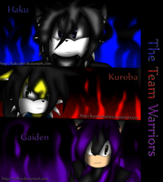 The Team Warrior Cover by Haku360