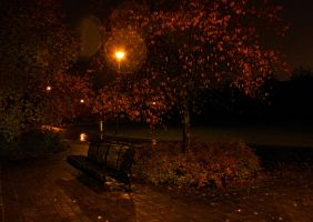 autumn night by KariLiimatainen