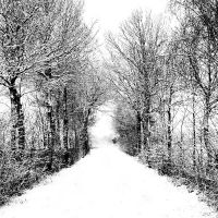 another snowy road by augenweide