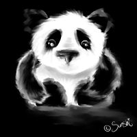 Panda by DreamingMerchant