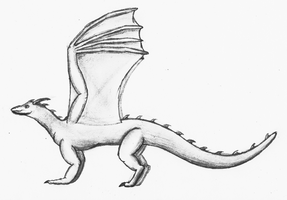 Dragon Concept Art, Pencil Drawing by TheUnknownety