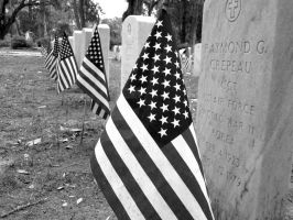 Some gave all by Statham75