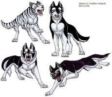 Ginga Legend Wolfs by IsisMasshiro