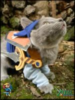 TLoZ Four Paws: Blue Link by CyanideKandies