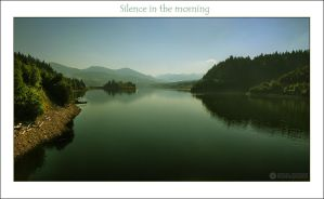 Silence in the morning by adypetrisor