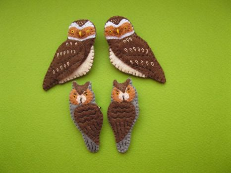 burrowing owl + Long-eared Owls by K0yomy
