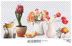 Still life Png-5p by YENJUE
